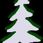 pine-winter